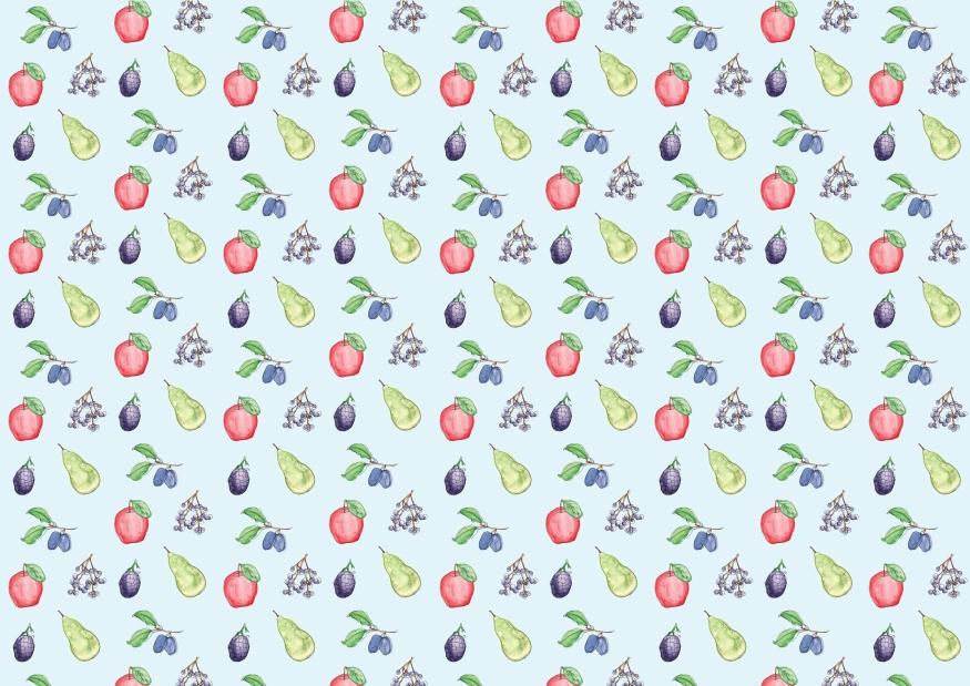 Autumn/Winter Fruit